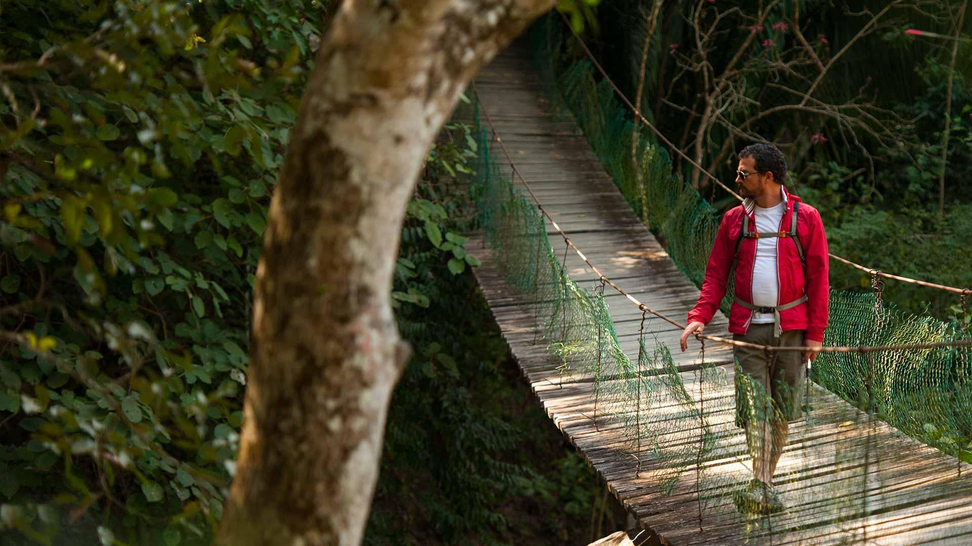 Puerto Vallarta recentemente começou a explorar o ecoturismo - Foto: Divulgação
