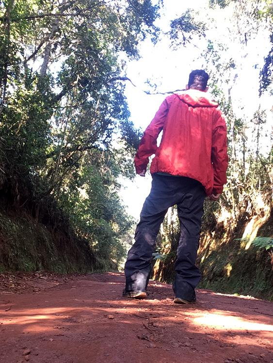Trilha ao Pico do Itacolomi, bem sinalizada, no Parque Estadual Itacolomi, perto de Ouro Preto