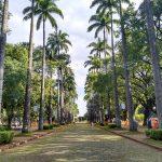 Turismo em Metrópole: Praça da Liberdade, em Belo Horizonte, Minas Gerais - Foto: Clovis Casemiro