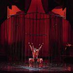 Zumanity, o show erótico do Cirque du Soleil - Eventos LGBT em Las Vegas - Foto: Divulgação